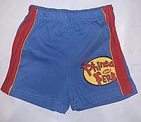 Шорты трикотажные синие Phineas&ferb (4-5 лет)