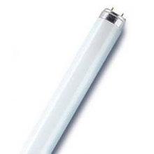 Лампа люминесцентная 18Вт, 36Вт, 58Вт