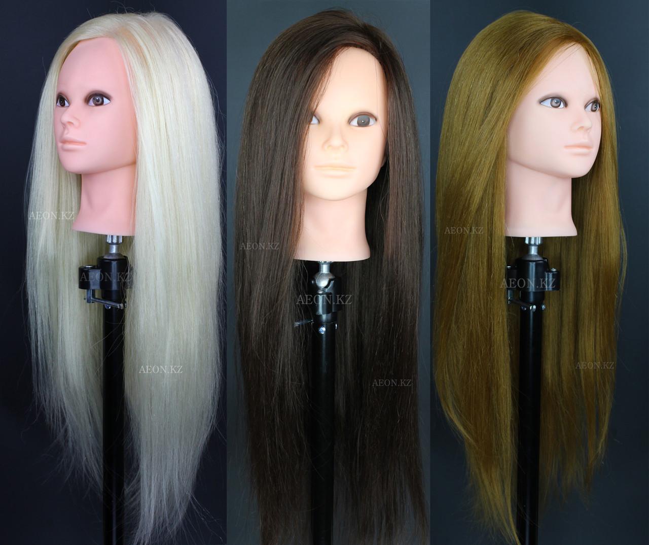 Голова-манекен блонд волос натуральный (60%) - 60 см (без макияжа)