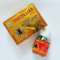 Tawon Liar ( Пчелка ) от боли в мышцах и суставах