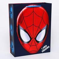 Пакет ламинированный вертикальный 'Ты- супергерой', Человек-паук, 31 х 40 х 11 см