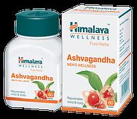 Ashvagandha (Ашвагандха) - жизненная сила, потенция, антистресс, баланс вата-доши