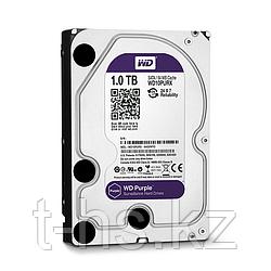"WD102PURX Жесткий диск 10ТБ Western Digital ""Caviar Purple"""