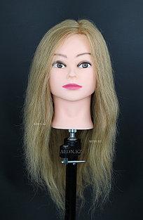 Голова-манекен русый волос натуральный европейский (100%) - 55 см