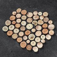 Набор круглых спилов 'Ассорти лесное', акация, дуб, лиственница, ель, сосна, 50 шт