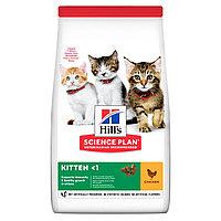 Hill's Kitten для котят, курица, уп.1,5 кг