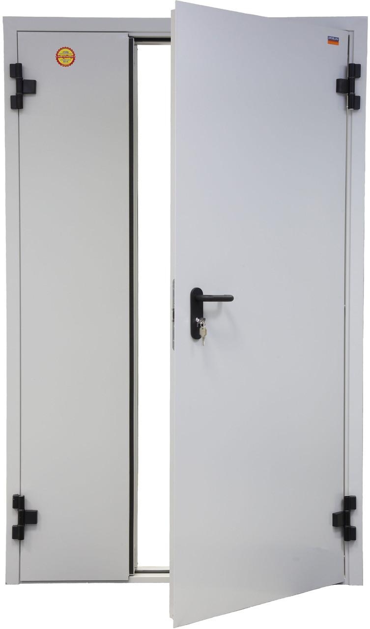 Противопожарная дверь серии ДП-2