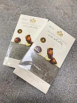 Шоколад Ракушки морской мир Belgian Chocolade sea shells