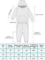 Костюм (худи, брюки) арт.1636/003