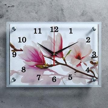 """Часы настенные, серия: Цветы, """"Бело-сиреневые цветы"""", 25х35  см, микс"""
