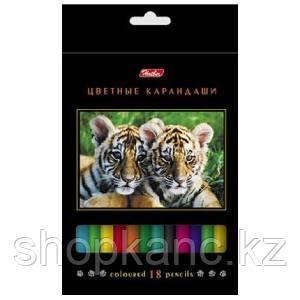 Карандаши цветные Hatber 18 цв. ДИКИЙ МИР карт.упаковка/европодвес заточ.