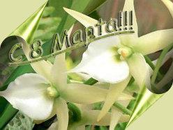 Поздравляем с 8 Марта 2012 года!