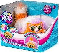 Интерактивная игрушка Tiny Furries Fluffy Kitties: котенок Jelly