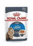 Royal Canin Ultra Light в желе, влажный корм для кошек склонных к полноте