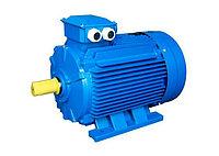 АИР80В2 2,2х3000 об/мин (электродвигатель) К