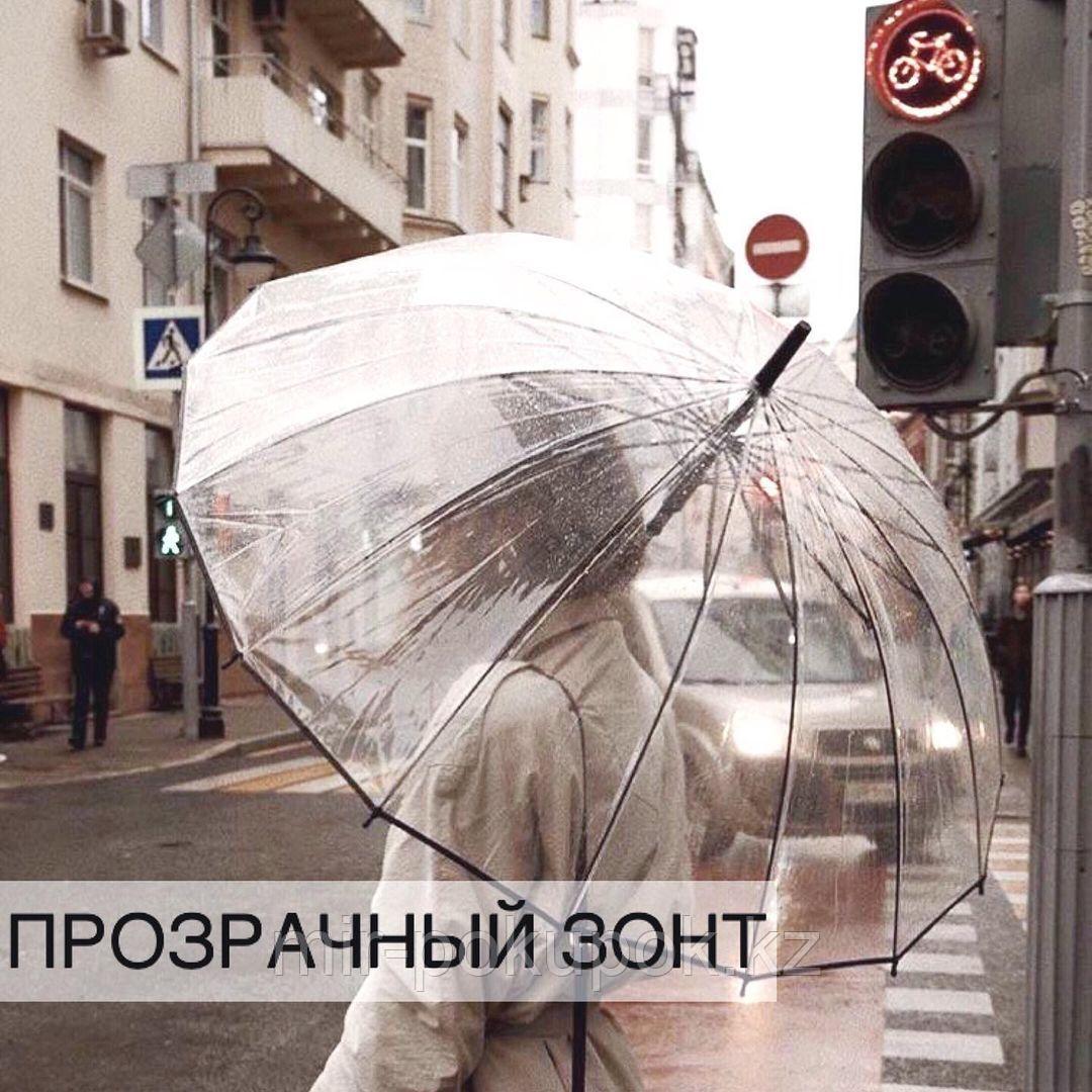 Зонтик-трость «Прозрачный купол» №2, Алматы