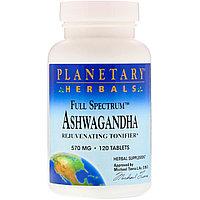 Planetary Herbals,ашваганда, 570 мг, 120 таблеток