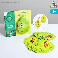 Карточки на кольце для изучения английского языка «Кто живёт в лесу?», 3+