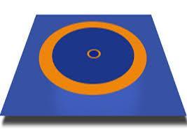Ковер борцовский трехцветный 12х12м с покрышкой, маты НПЭ толщина 5 см