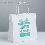Пакет подарочный бумажный с разными приколами размер 22 × 22 × 11 см и 24 х 14 х 30 см, фото 2