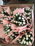 Тюльпаны на 8 марта с логотипом компании