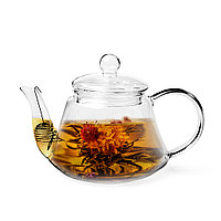 Чайник заварочный 800мл со стальным фильтром (стекло)