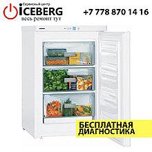 Ремонт морозильных камер Liebherr