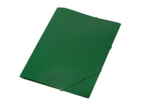 Папка формата А4 на резинке, зеленый