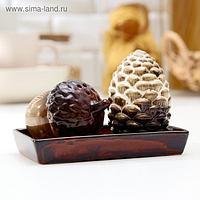 Набор для специй «Жёлудь с шишкой», 2 шт: солонка, перечница, на керамической подставке