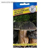 Мицелий грибов Австралийский боровик, 50 мл