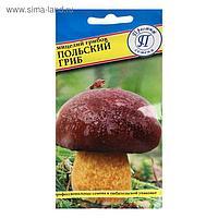 Мицелий грибов Польский гриб, 60 мл