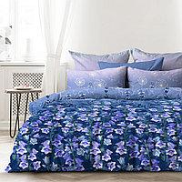 Любимый дом Комплект постельного белья  Тишина, 2 спальный евро