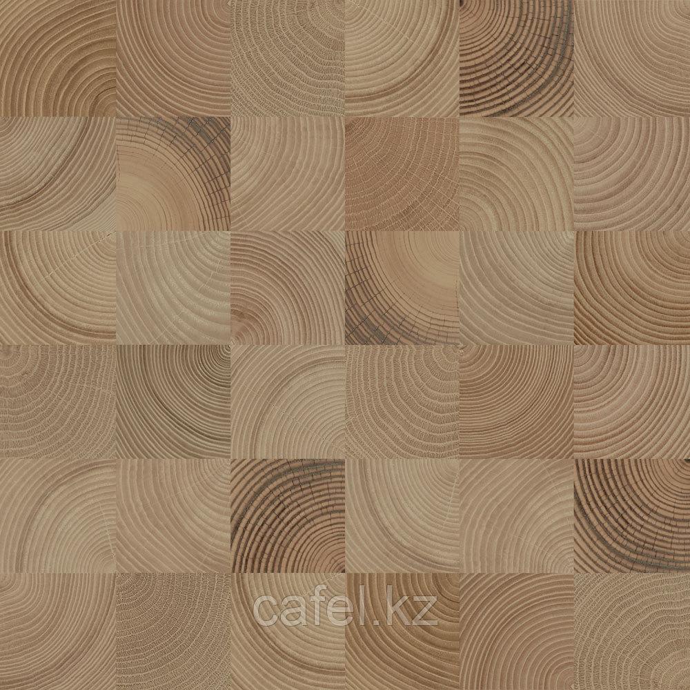 Кафель | Плитка настенная 50х50 Шиен | Shien 4 коричневый