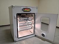 Инкубатор Demetra на 264 яиц
