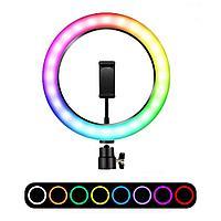 Кольцевая Лампа 33 см. Разноцветная