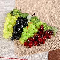 Виноград 22 ягоды 12 см глянец микс