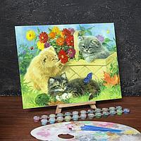 "Роспись по номерам без подрамника ""Котята"", 40 х 30 см"