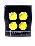 Прожектор светодиодный, сафит 200 W. Софиты для парков, фасадов зданий, скверов, парковок., фото 5