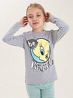 Батик Комплект футболка и брюки для девочки (02780_BAT)
