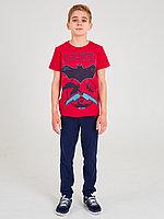 Batik Комплект футболка и брюки для мальчика (02766_BAT)