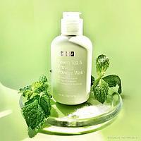 Green Tea & Enzyme Powder Wash [By Wishtrend]