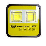 Прожектор светодиодный, led сафит, софиты 100 ватт. Прожектора для скверов, стоянок, на дачу, в парк., фото 2
