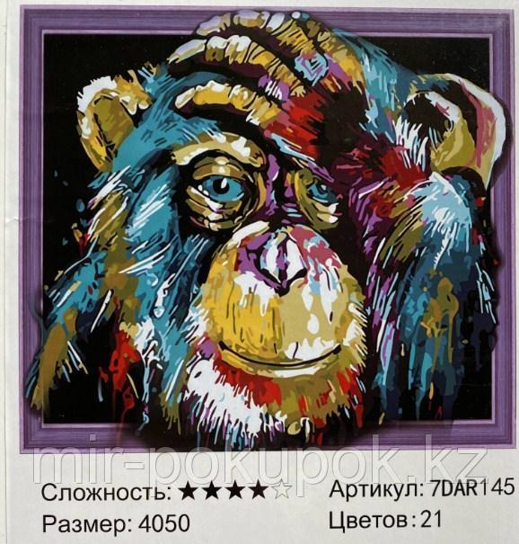 "Алмазная картина ""'Обезьяна "" 7Д  40*50 см"