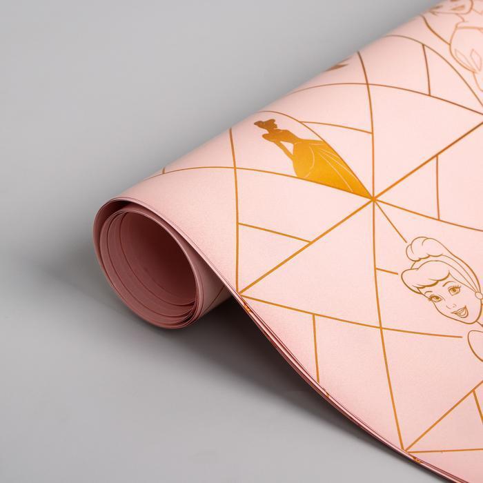 Бумага упаковочная глянцевая двусторонняя , Принцессы,  60x90 см 5414222
