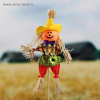 Огородное пугало «Тыква», h = 50 см, МИКС