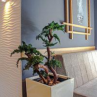 Озеленение кафе, баров, ресторанов искусственными растениями