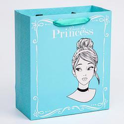 """Пакет ламинат вертикальный """"Princess"""", Принцессы, 23х27х11,5 см   4628777"""