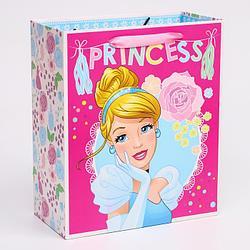 """Пакет ламинат вертикальный """"Princess"""", Принцессы, 23х27х11,5 см   4628807"""