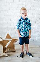 Batik Футболка поло для мальчика с длинным рукавом (00201_BAT)