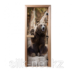 Дверь из стекла с фотопечатью Бурый медведь